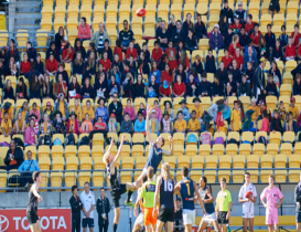 2015 a big year for AFL in Wellington