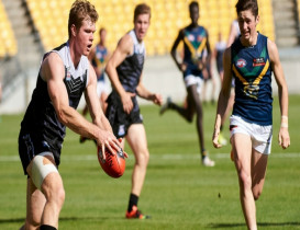 NZ debutants steal the show against AFL Academy