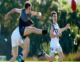 Development players announced for 2019 AFLNZ Premiership