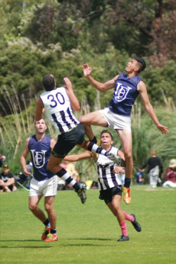 Giovanni Moutain Silbery Uni Blues AAFL GF Scott Wilson