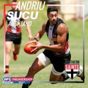Andriu Sucu 2017 Profile Picture