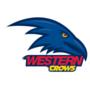 Western Crows thumbnail
