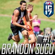 Brandon-Sucu