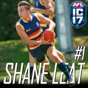 Shane-Leat