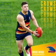 Brad Wade final Profile