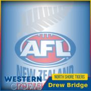 Drew Bridge