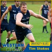 Tim Stokes